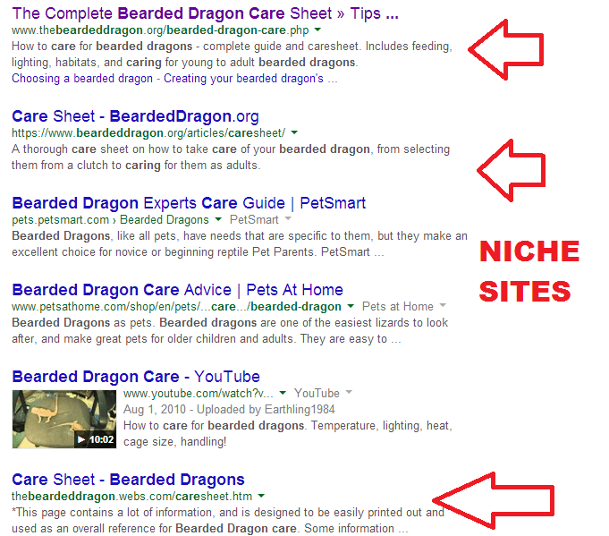 bearded dragon SERPS
