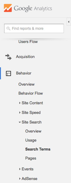 site search terms