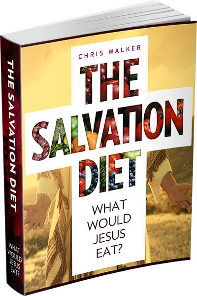 salvationdiet-ebook